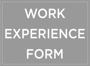 Work Experience Form Button